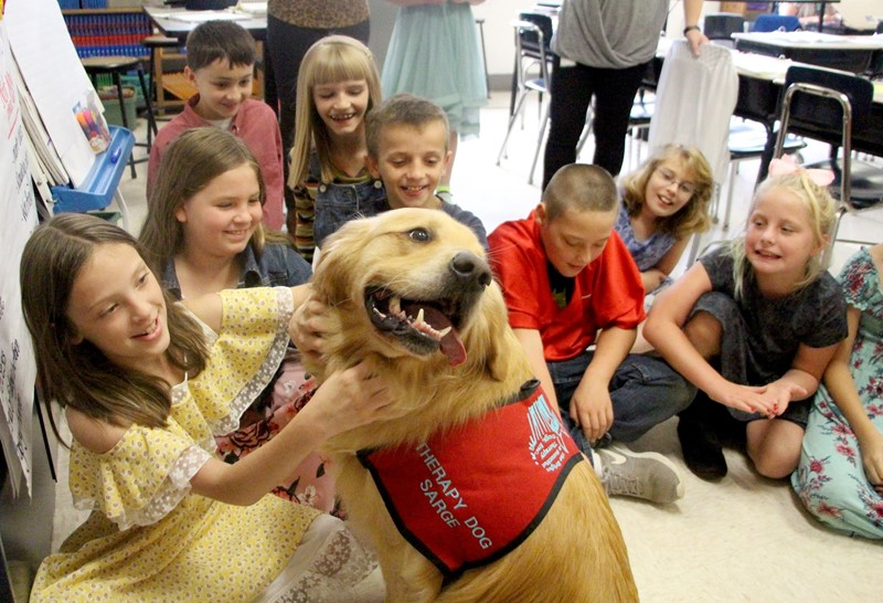 Therapy dog surrounded by students in class